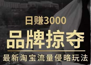 日赚3000+品牌店群,最新淘宝流量侵略玩法(官方售价3600元)