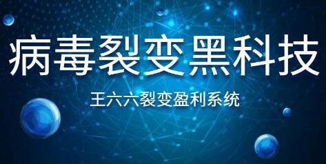 王六六裂变盈利系统课程第六课,病毒裂变黑科技