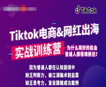 零基础学习抖音国际版TikTok海外短视频新手实战训练营【视频课】
