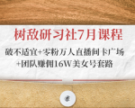树敌研习社7月课程:破不适宜+零粉万人直播间卡广场+团队赚佣16W美女号套路