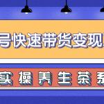 柚子视频号带货实操变现项目,零基础操作养身茶月入10000+