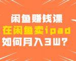 闲鱼赚钱课:在闲鱼卖ipad,如何月入3W?详细操作教程